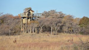south africa game lodge