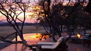 zangarna game lodge
